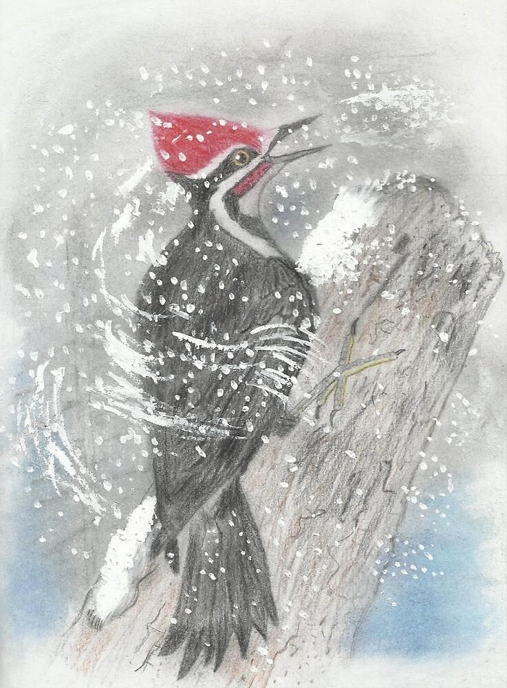 Pileated Woodpecker by benjfamilyart