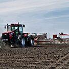 Plantin' Corn by Steve Baird