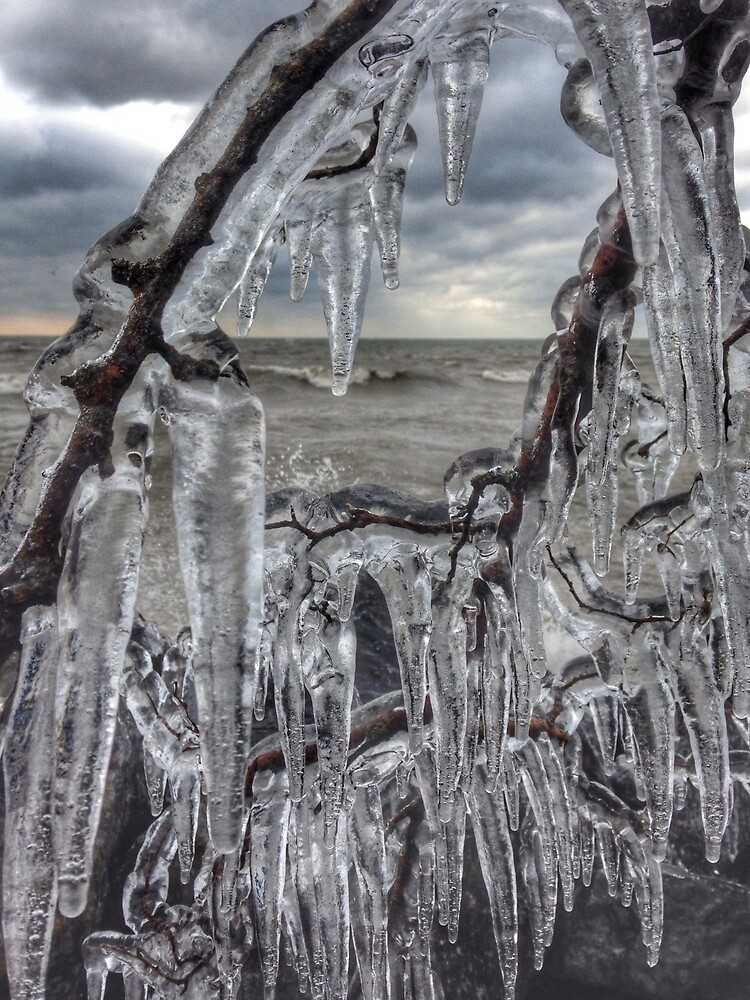 Point Pelee Icicles by SarahCStaaf