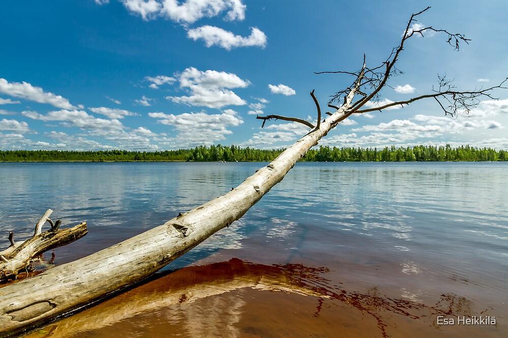 Lake Pitkäjärvi by Esa Heikkilä