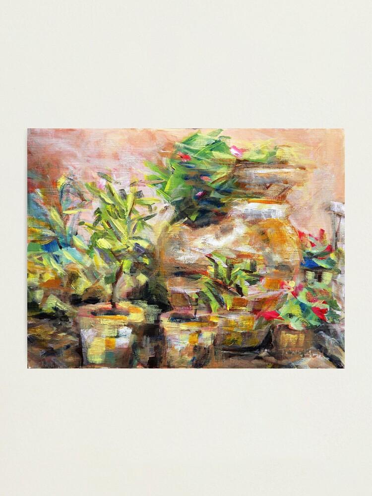 Alternate view of Garden Pots Photographic Print