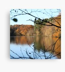 UK Autumn countryside Canvas Print
