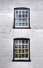 Geraniums in the Window by Nigel Bangert