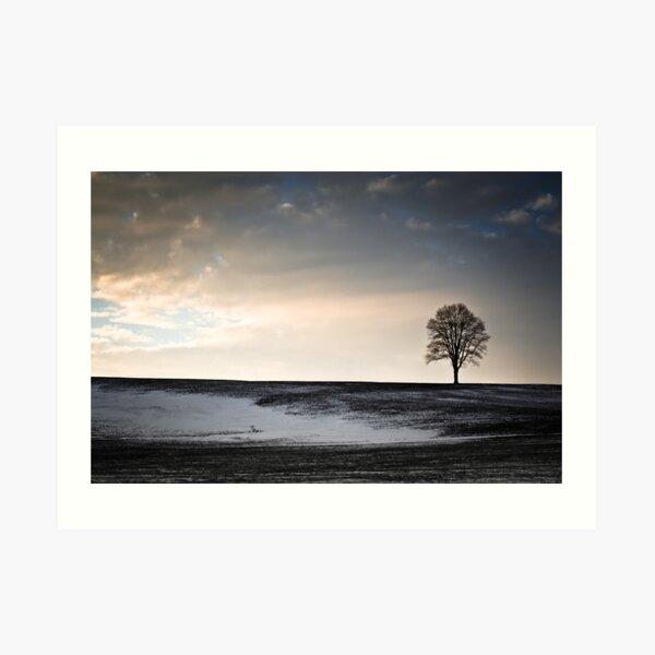 Lonesome Tree On A Hill III Art Print