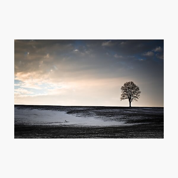Lonesome Tree On A Hill III Photographic Print
