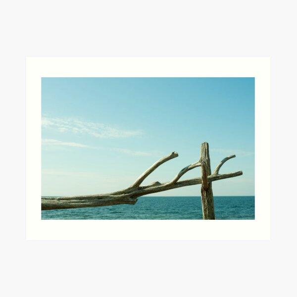 Gotland Art Print
