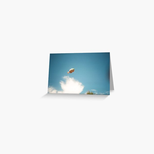 Fish In The Sky Greeting Card