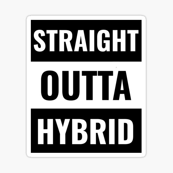 Hybrid School for Teachers and Kids Sticker