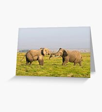 Elephant Fight Greeting Card