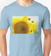 Sunflowers in the Sun Unisex T-Shirt