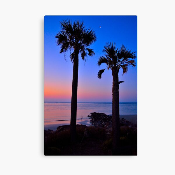 Palm and Moon over Water Canvas Print