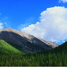 Vibrant Mountain by iheartdenver