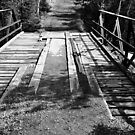 Wood and Metal Bridge 1 by Emily Rose