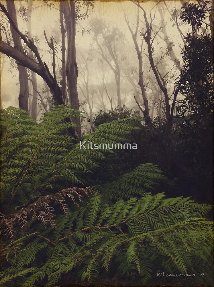 Rainforest No.11 by Kitsmumma