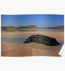Ards Forest Park Beach Poster