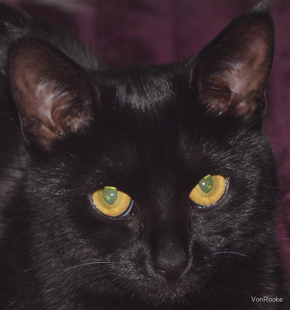 Black Cat by VonRooke