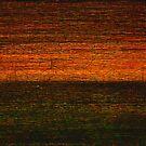 Long Lost by auroraarts1