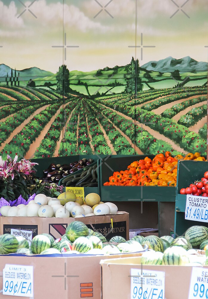 My Favorite Grocery Store by Heather Friedman