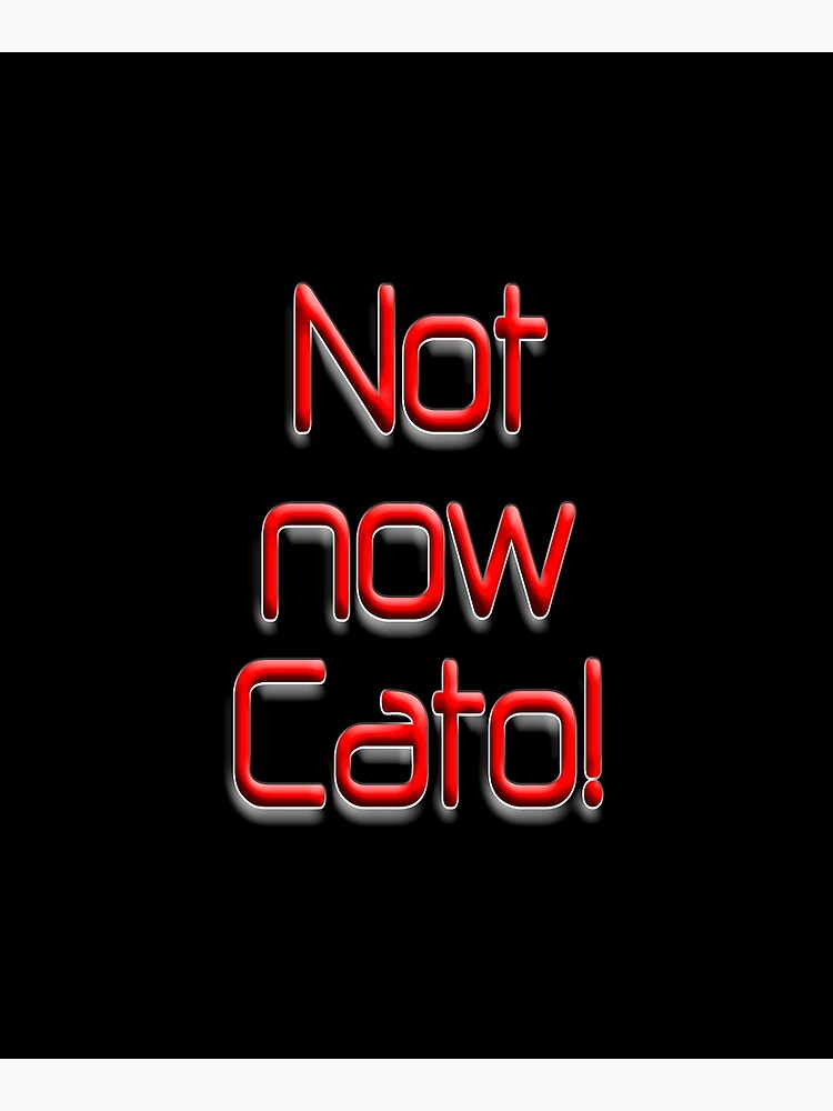 Not now Cato! Cato Fong, Inspector Clouseau, Film, Burt Kwouk, Chinese manservant, Pink Panther. by TOMSREDBUBBLE