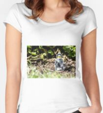 Sir Gleamalot Women's Fitted Scoop T-Shirt
