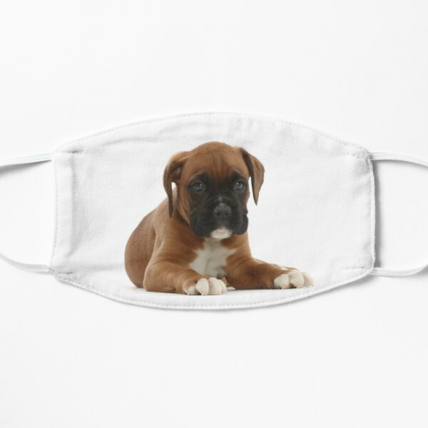 Boxer Puppy Mask