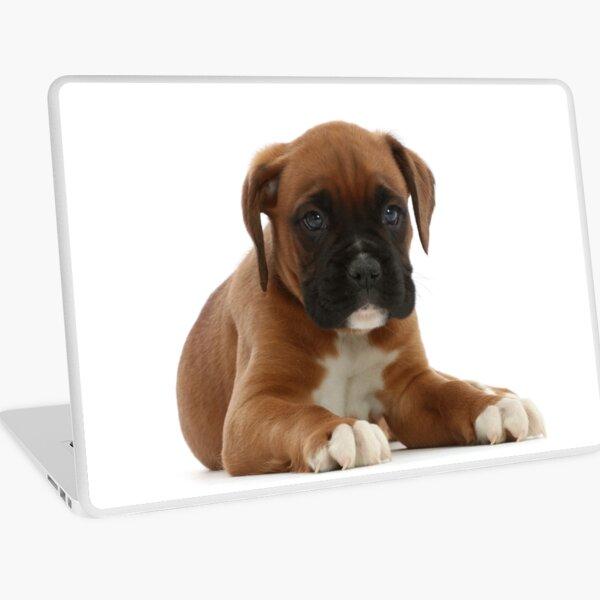 Boxer Puppy Laptop Skin