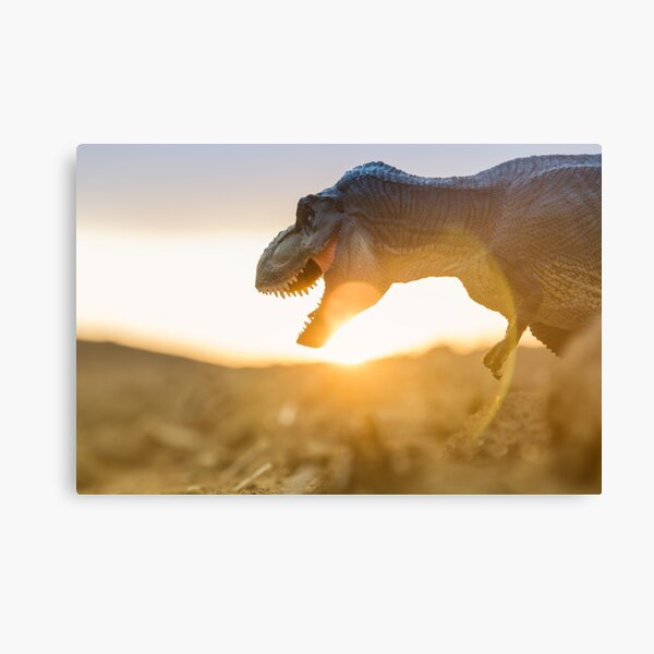 T. Rex in the sunset Canvas Print