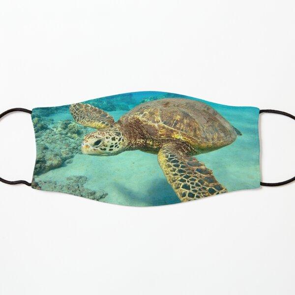 Green Sea Turtle Kids Mask