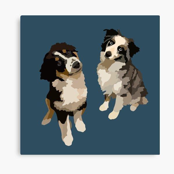 Two Aussies Australian Shepherd Dog Portrait Digital Illustration Canvas Print