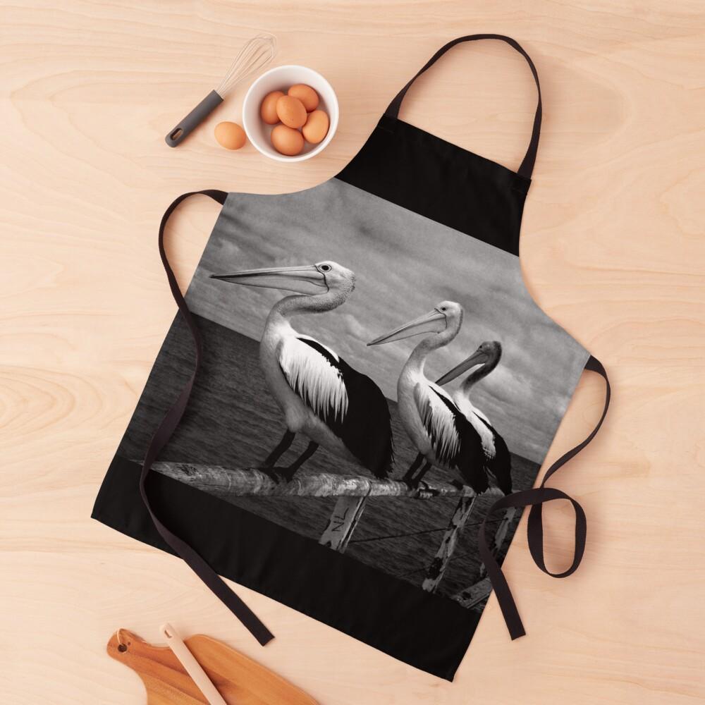 Pelicans Semaphore Apron By Paulamcmanus Redbubble