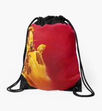 Precariously Purchased Drawstring Bag