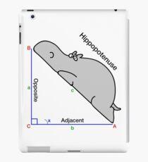 Math Humor iPad Case/Skin