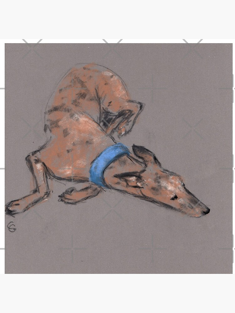 Sighthound in pastel chalk by lobitos
