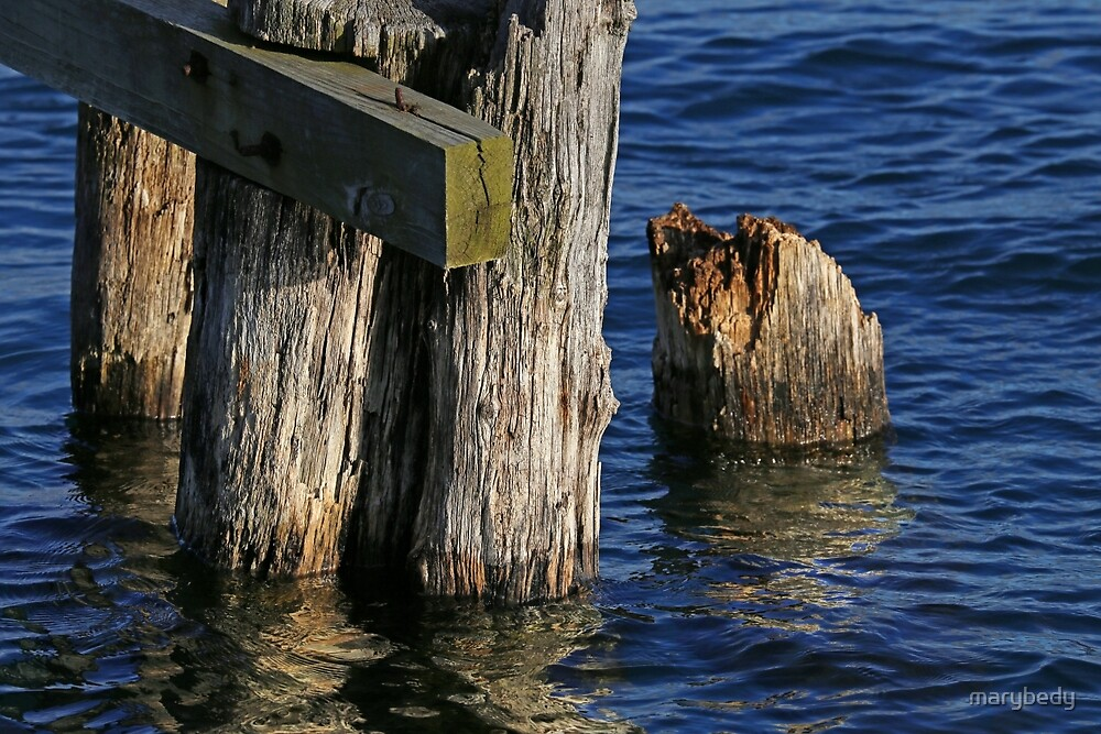 Old Dock Parts 2 by marybedy