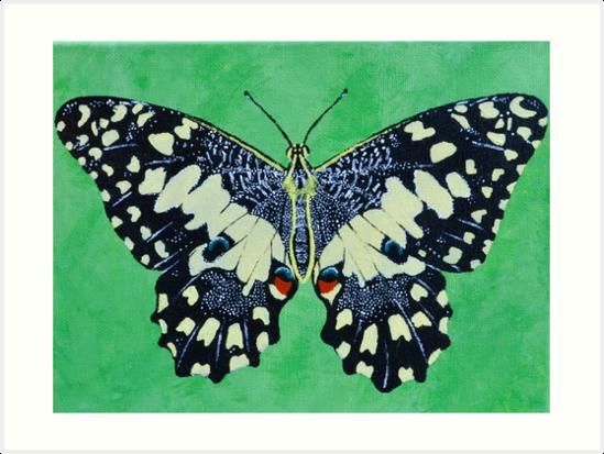 Butterfly #1 by Maya Vavra