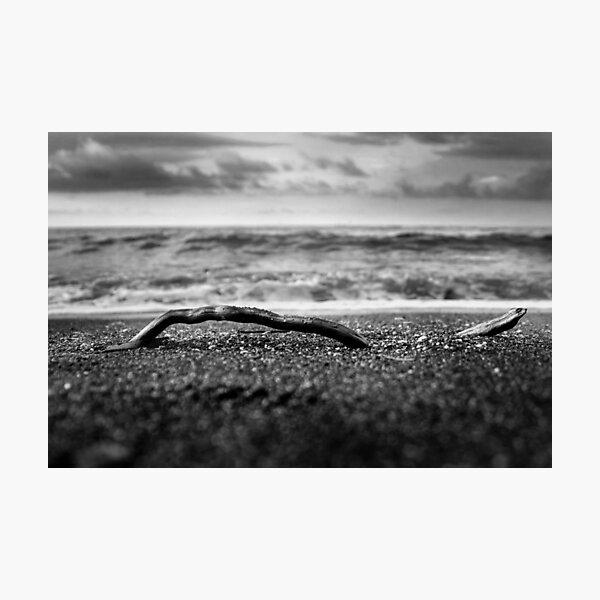 piece Photographic Print