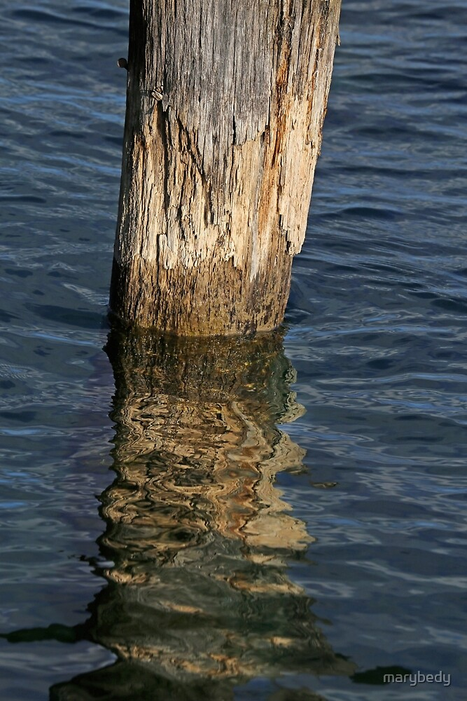 Old Piling and Reflection 1 by marybedy