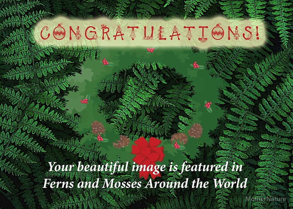 Not For Sale - Featured Banner for Ferns And Mosses by MotherNature