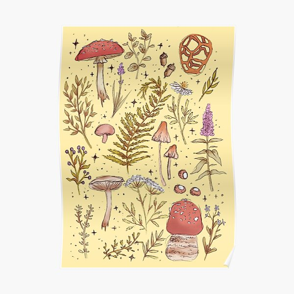 Forest Treasures Poster