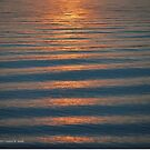 Water Surface During Sunset   Eatons Neck, New York by © Sophie W. Smith