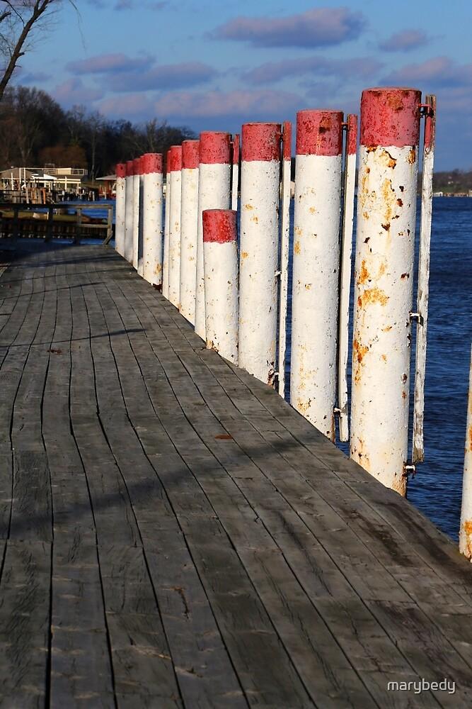 The Dock at the Saint Clair Inn by marybedy