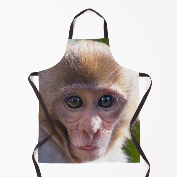 Watercolor Monkey, Rhesus Monkey 03, Silver River, Florida Apron