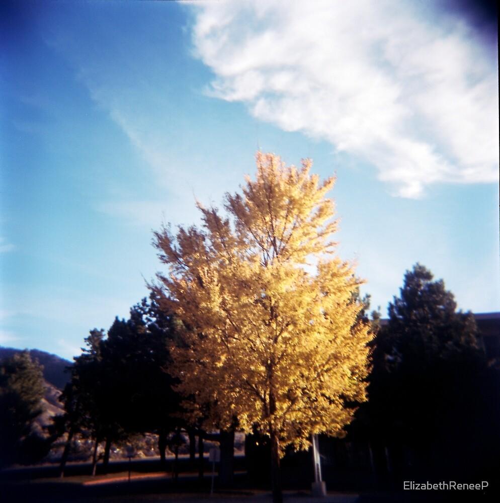 Yellow Tree Blue Sky by ElizabethReneeP
