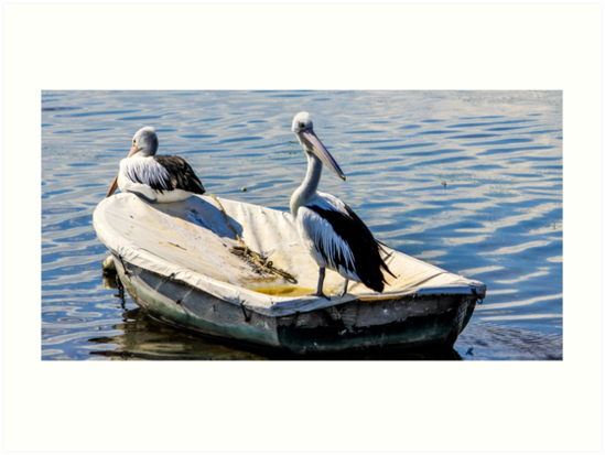 Two in a boat by karljzeller