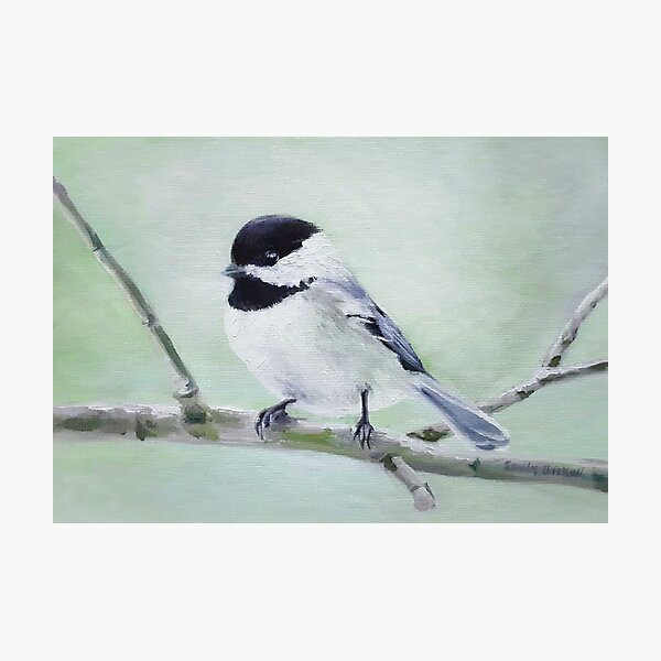 Chickadee in Spring painting Photographic Print