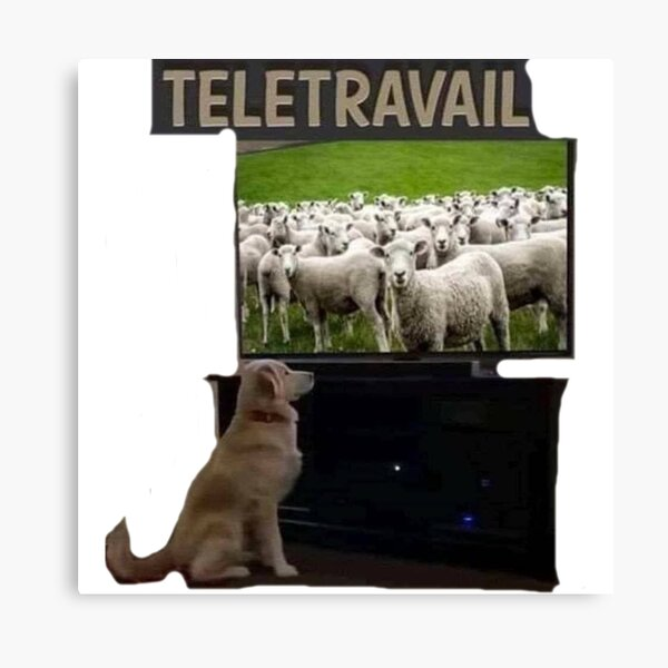 Telecommuting. Canvas Print