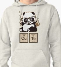 Chemistry panda discovered cute Pullover Hoodie
