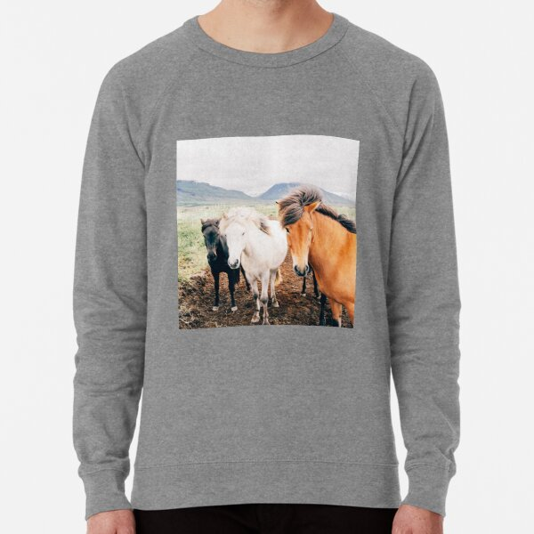 Fergus The Horse Lightweight Sweatshirt