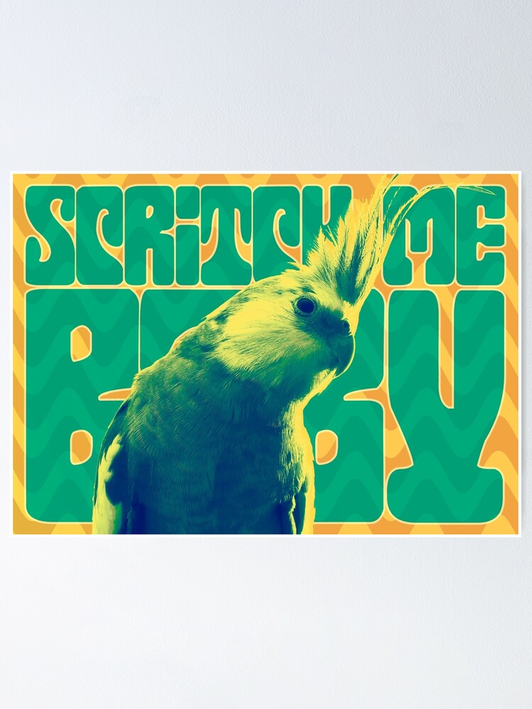Alternate view of Scritch Me Baby Poster
