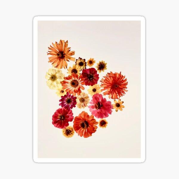 Jovia Botanical Sticker